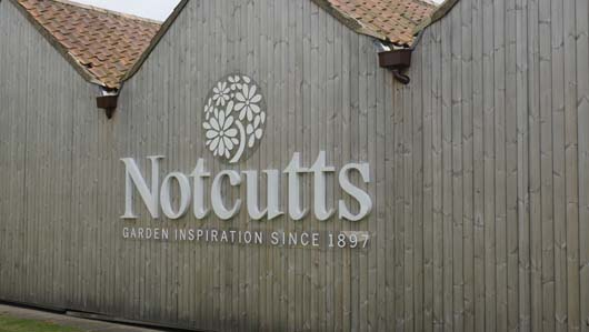 Notcutts Norwich 250419_GTN001.jpg