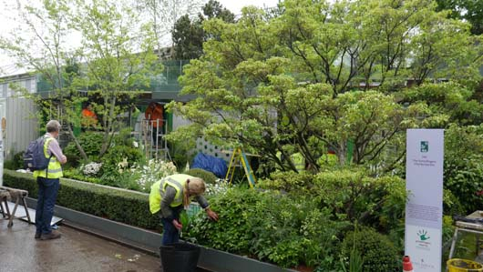 Greenfingers at Chelsea 2019 180519_GTN076.jpg
