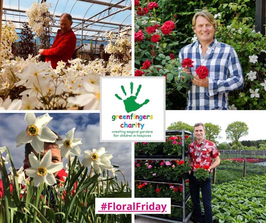 #FloralFriday 3rd May 2020.jpg