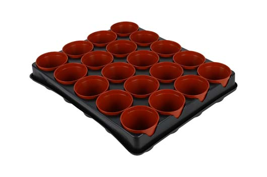 70200052_seed_and_cutting_tray_20_pot_co.jpg