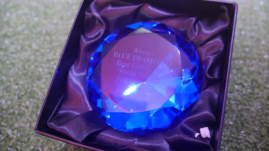 Blue Diamond Awards 2019 190319_GTN121.jpg