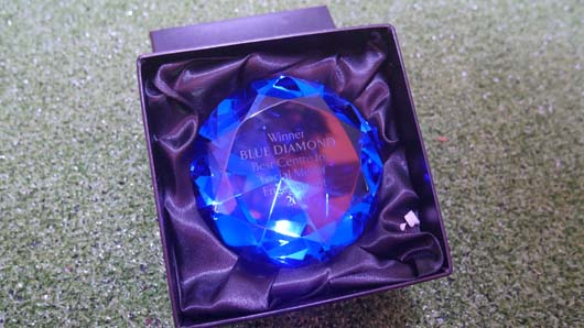 Blue Diamond Awards 2019 190319_GTN122.jpg