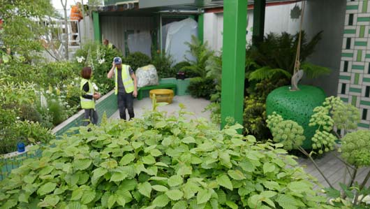 Greenfingers at Chelsea 2019 180519_GTN049.jpg