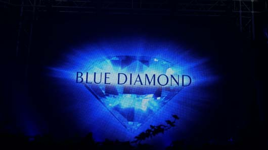 Blue Diamond Awards 2019 190319_GTN204.jpg