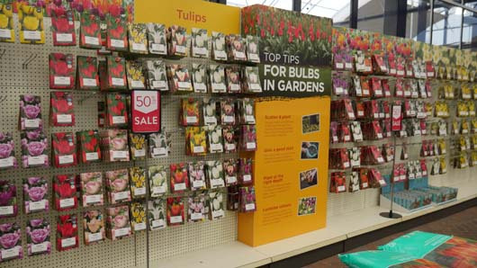 Dobbies Huntingdon 051218_GTN004.jpg