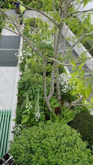Greenfingers at Chelsea 2019 180519_GTN009.jpg