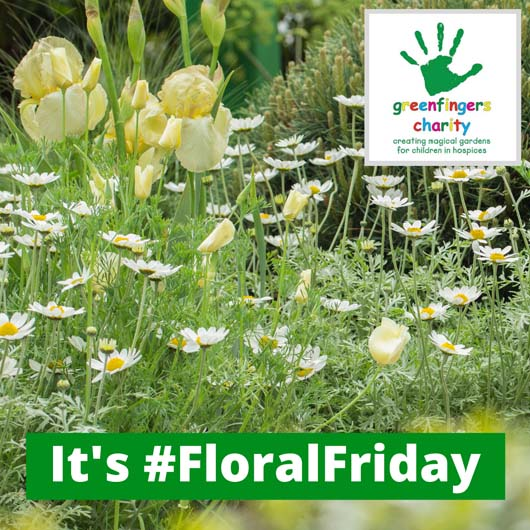 It's #FloralFriday.jpg
