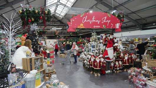 Dobbies Edinburgh 251119_GTN044.jpg