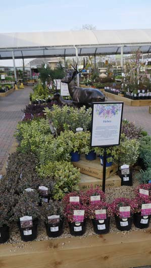 Blue Diamond Bicester Avenue 150419_GTN182.jpg
