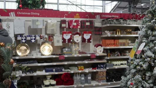 Dobbies Edinburgh 251119_GTN035.jpg